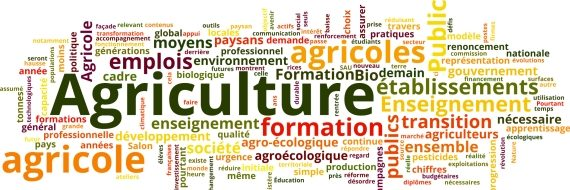 Comité de défense et de développement de l'enseignement Agricole Public